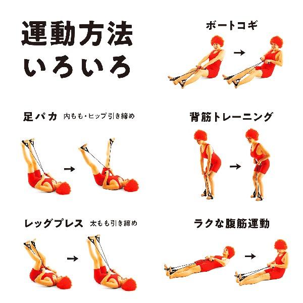 【新発売】erugamより腹筋ローラー・トレーニングチューブ・トレーニングバンドを販売開始します。